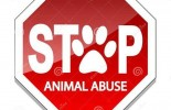 illustration-stop-abuse-animals-as-sign-animal-protection-30278452