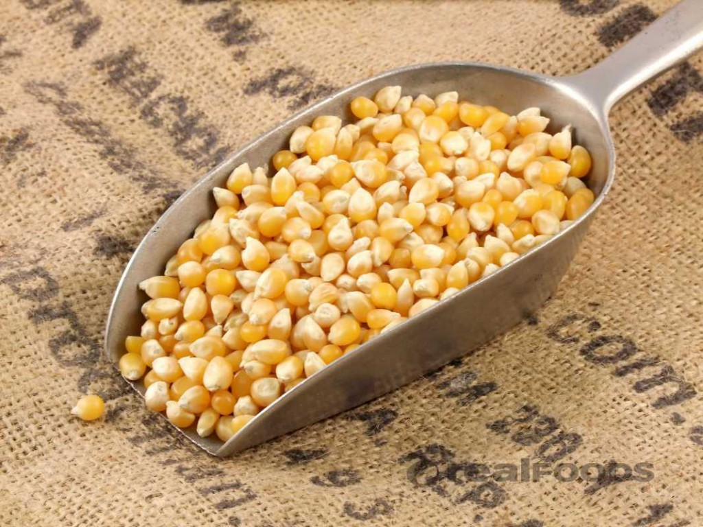 Organic Popping Corn from Real Foods