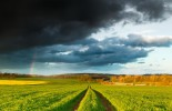 unpredictable_weather
