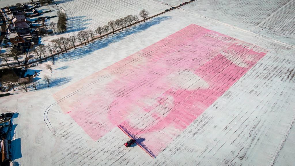 Steenwijk - De Mona Lisa gespoten in sneeuw. Agrifac, uitvinders
