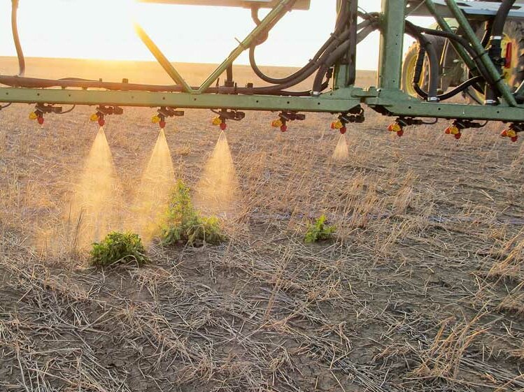 Spot spraying promises definite input reductions, but the scale of operation must be big enough to justify investment costs. Photo: Werkbild